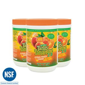 0005005_btt-20-citrus-peach-fusion-480-g-canister-3-pack_300